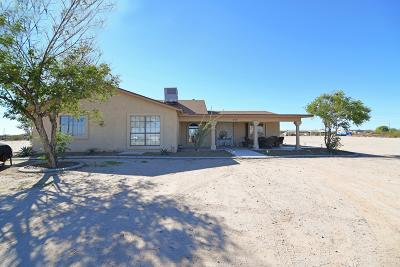 Queen Creek Single Family Home For Sale: 1855 W Bonnie Lane