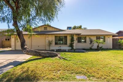 Tempe  Single Family Home For Sale: 1973 E Carson Drive