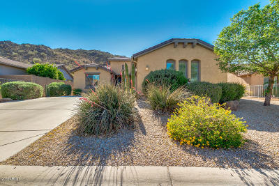 San Tan Valley Single Family Home For Sale: 31916 N Larkspur Drive