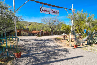Wickenburg Single Family Home For Sale: 28507 W Us Highway 60