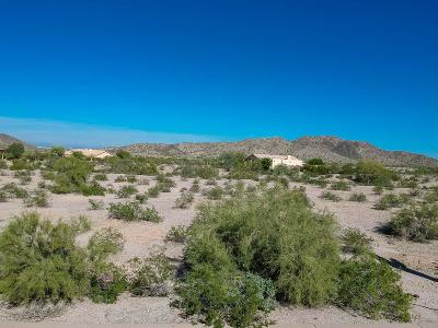 Goodyear Residential Lots & Land For Sale: 9365 S Krista Drive E