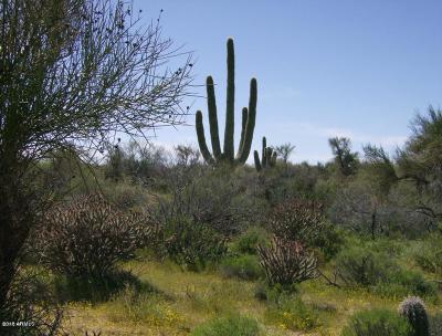 Scottsdale Residential Lots & Land For Sale: 148xx E Lomas Verdes Drive