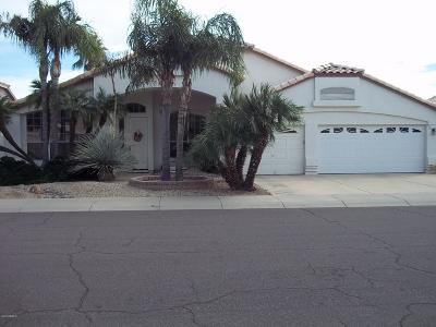 Glendale Single Family Home For Sale: 18865 N 78th Lane