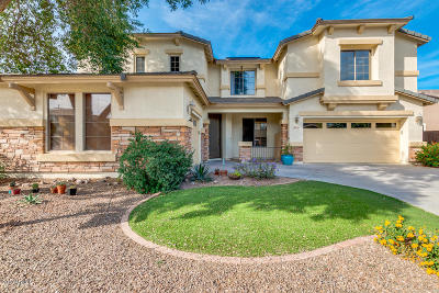 Queen Creek Single Family Home For Sale: 18510 E Oak Hill Lane