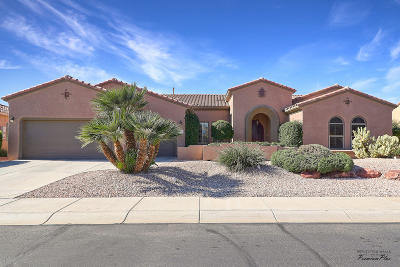 Surprise Single Family Home For Sale: 16863 W Bryce Canyon Lane
