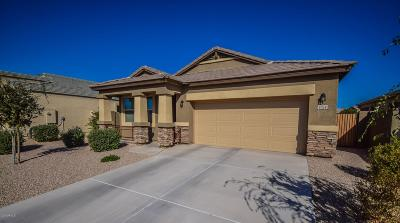 Maricopa Single Family Home For Sale: 41158 W Curtis Lane