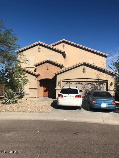 Tolleson Single Family Home For Sale: 10048 W Albeniz Place