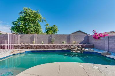 Buckeye Single Family Home For Sale: 25712 W St Kateri Drive