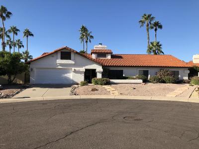 Scottsdale Single Family Home For Sale: 10556 E Bella Vista Drive