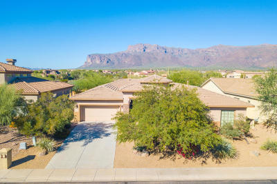Gold Canyon Single Family Home For Sale: 8520 E Twisted Leaf Drive