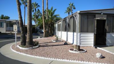 Apache Junction Residential Lots & Land For Sale: 732 S Havasupai Drive
