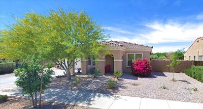 Queen Creek Single Family Home For Sale: 24286 S 208th Place