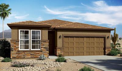 Goodyear Single Family Home For Sale: 17588 W Maricopa Street