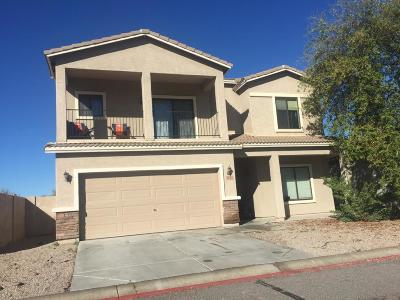 Apache Junction Single Family Home For Sale: 2816 S Powell Road