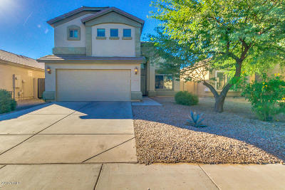 Maricopa Single Family Home For Sale: 45723 W Sheridan Road