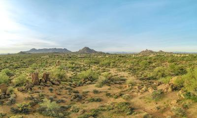 Scottsdale Residential Lots & Land For Sale: N 114 Street