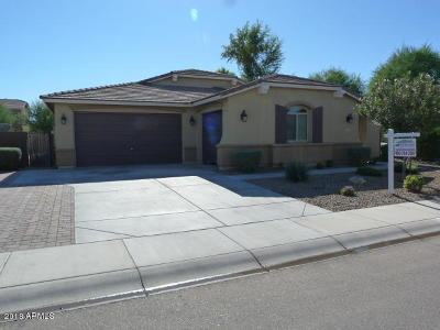 Queen Creek Single Family Home For Sale: 823 W Leatherwood Avenue