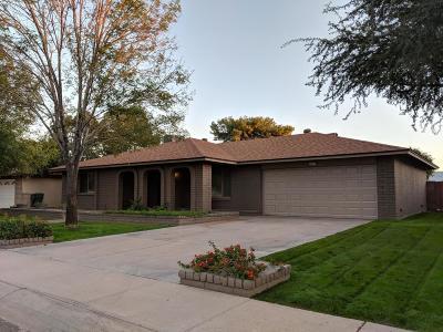 Tempe Single Family Home For Sale: 1213 E Gemini Drive
