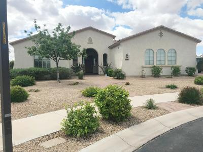 Queen Creek Single Family Home For Sale: 22393 E Munoz Court