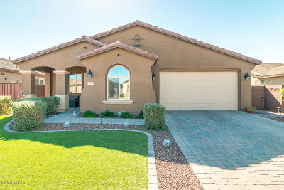San Tan Valley Single Family Home For Sale: 151 W Hackberry Avenue