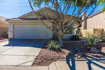 Mesa Single Family Home For Sale: 6053 E Sierra Morena Street