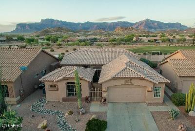 Gold Canyon Single Family Home For Sale: 7240 E Desert Spoon Lane