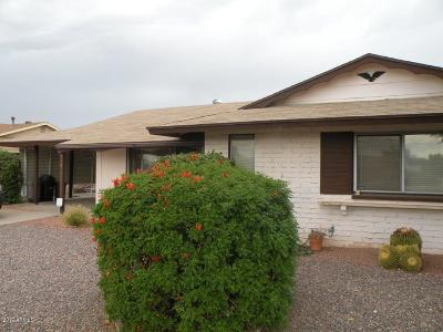 Sun City AZ Rental For Rent: $995
