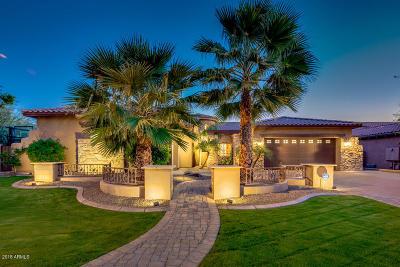 Scottsdale Single Family Home For Sale: 9883 E Voltaire Drive