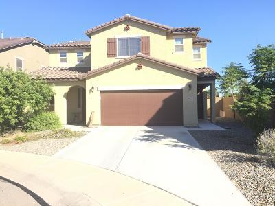 Maricopa Single Family Home For Sale: 19571 N Crestview Lane