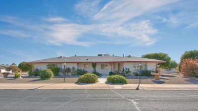 Mesa Single Family Home For Sale: 5929 E Duncan Street