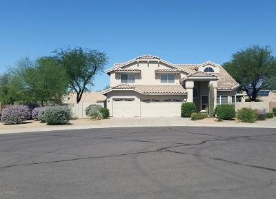 Cave Creek Single Family Home For Sale: 4718 E Windstone Trail