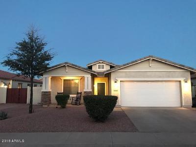 Gilbert Single Family Home For Sale: 6981 S View Lane