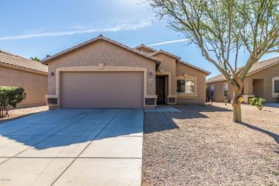 San Tan Valley Single Family Home For Sale: 2739 E Olivine Road