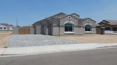 Glendale Single Family Home For Sale: 13611 W Sierra Vista Drive