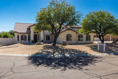 Phoenix Single Family Home For Sale: 4803 W Desert Hollow Drive
