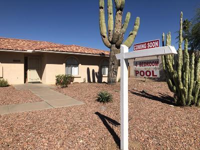 Mesa Single Family Home For Sale: 2416 E Ivyglen Street