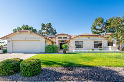 Sun City West Gemini/Twin Home For Sale: 12903 W Peach Blossom Drive