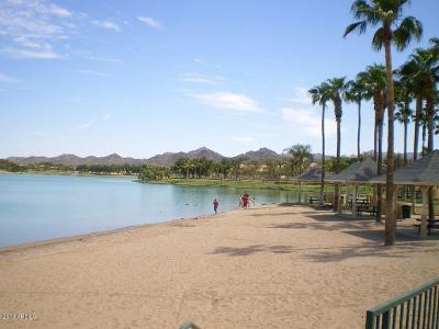 Goodyear Rental For Rent: 10823 S Dreamy Drive