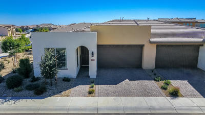 San Tan Valley Condo/Townhouse For Sale: 923 E Cereus Pass