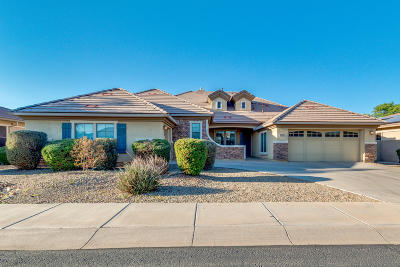 Goodyear Single Family Home For Sale: 4380 N 158th Drive