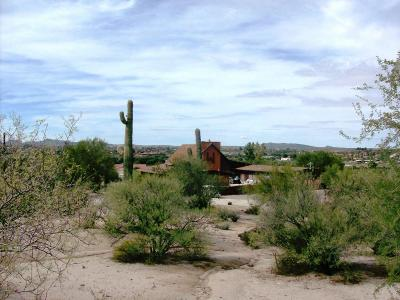 Wickenburg Single Family Home For Sale: 345 E Thurber Road