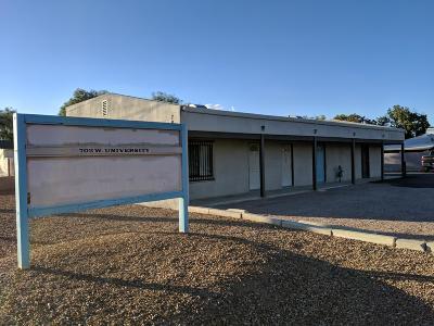Mesa Commercial For Sale: 702 W University Drive