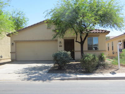 Maricopa Single Family Home For Sale: 44115 W Askew Drive