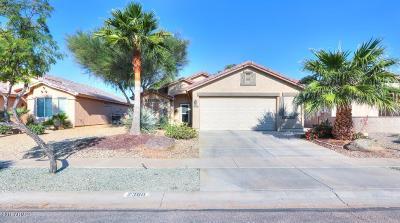 Casa Grande Single Family Home For Sale: 2360 E Santiago Trail