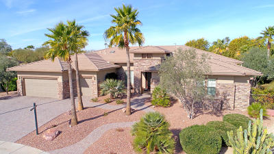 Surprise Single Family Home For Sale: 19644 N Majestic Vista Court