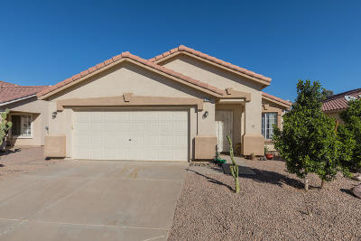 Chandler Single Family Home For Sale: 2344 E Browning Place