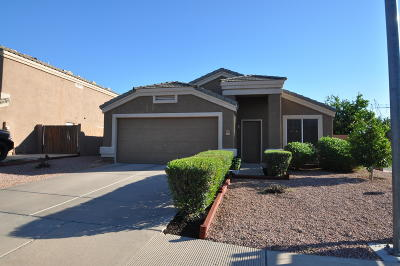 Mesa Single Family Home For Sale: 10321 E El Moro Circle