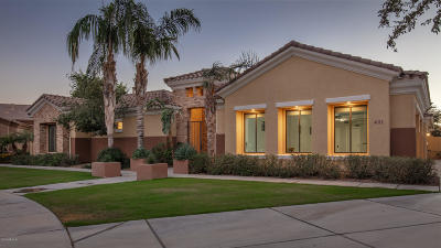 Chandler Single Family Home For Sale: 4013 E Scorpio Place