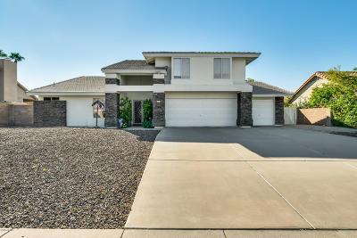 Phoenix Single Family Home For Sale: 741 E Acoma Drive