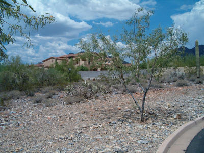 Scottsdale Residential Lots & Land For Sale: 10024 E Siesta Lane